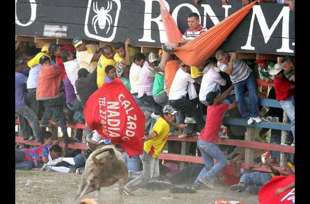 Dos caballos muertos y cuatro más heridos en las corralejas