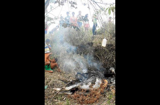 """El cuerpo de """"El Chino"""", como se llamaba el caballo, fue incinerado"""