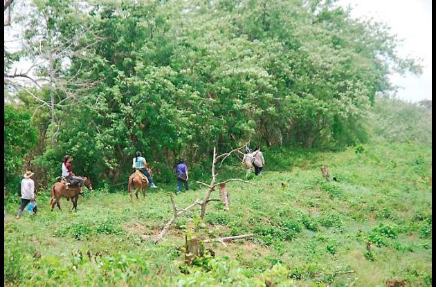 Familias campesinas esperan acciones del Estado para recuperarlas las tierras qu