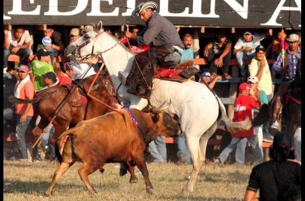 Corralejas de Sincelejo: tradición y folclor