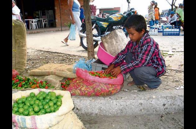 Trabajo infantil en Córdoba.