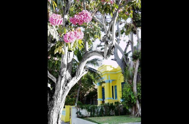 Vivian Saad sueña con el Centro Histórico de Barranquilla restaurado.