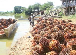 Aguas de Bolívar