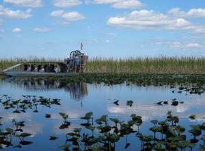 Vista del parque natural Evergaldes Holiday Park de Broward, Florida (EEUU).