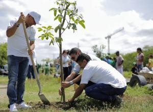 Con esta 'Siembratón, la ciudad se suma a la campaña de siembra de un millón de árboles en Latinoamérica.