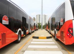 Buses parqueados