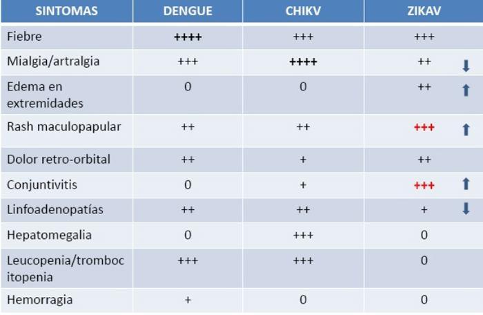 Síntomas clínicos de dengue, chikungunya y zika